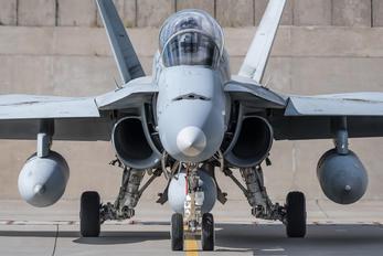 #1 Spain - Air Force McDonnell Douglas EF-18B Hornet CE.15-10 taken by Mariusz Jóźwiak