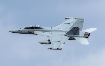 166932 - USA - Navy McDonnell Douglas F/A-18F Super Hornet