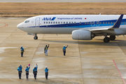 ANA - All Nippon Airways JA82AN image
