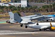 C.15-22 - Spain - Air Force McDonnell Douglas EF-18A Hornet aircraft