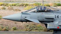 C.16-38 - Spain - Air Force Eurofighter Typhoon aircraft