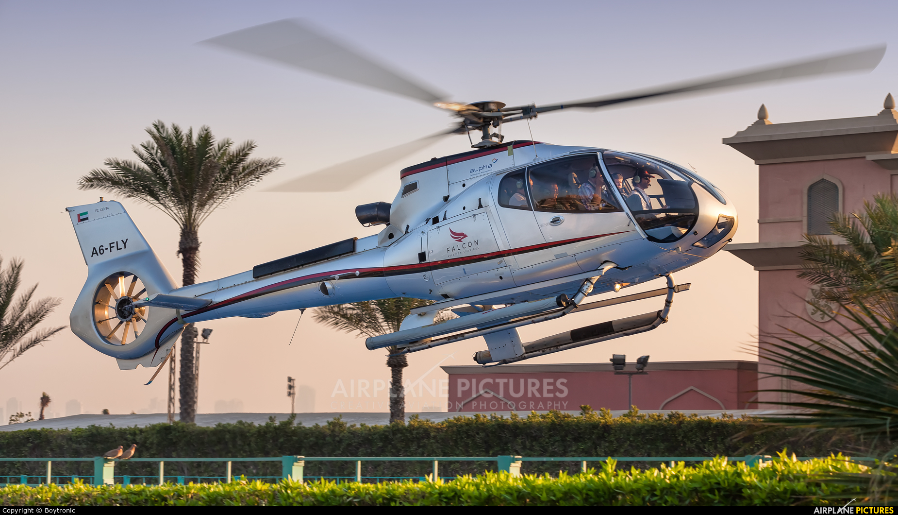 A6 fly falcon aviation eurocopter ec130 all models at for Ec harris dubai