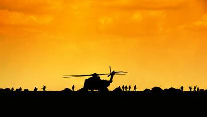 84+35 - Germany - Army Sikorsky CH-53G Sea Stallion