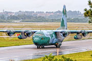 2471 - Brazil - Air Force Lockheed C-130M Hercules aircraft