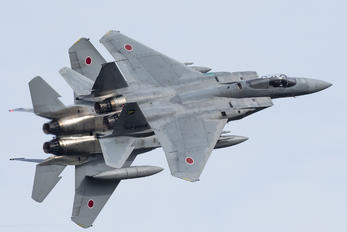 63-8958 - Japan - Air Self Defence Force Mitsubishi F-15J