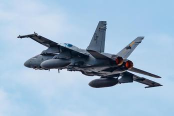 165531 - USA - Navy McDonnell Douglas F/A-18D Hornet
