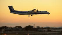 JA859A - ANA Wings de Havilland Canada DHC-8-400Q / Bombardier Q400 aircraft