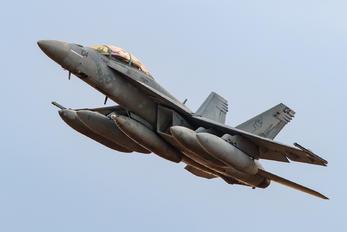 166919 - USA - Navy McDonnell Douglas F/A-18F Super Hornet
