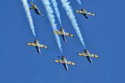 - - Baltic Bees Jet Team Aero L-39C Albatros aircraft