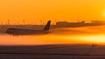 D-AIST - Lufthansa Airbus A321 aircraft
