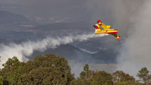 UD.13-25 - Spain - Air Force Canadair CL-215T aircraft