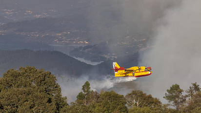 UD.13-27 - Spain - Air Force Canadair CL-215T