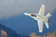 J-5006 - Switzerland - Air Force McDonnell Douglas F-18C Hornet aircraft