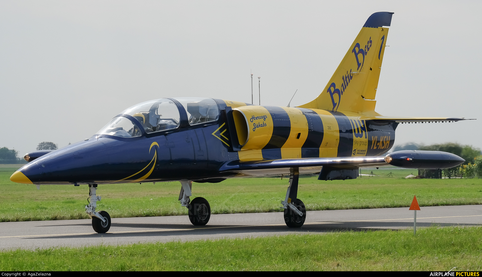 Baltic Bees Jet Team YL-KSH aircraft at Radom - Sadków