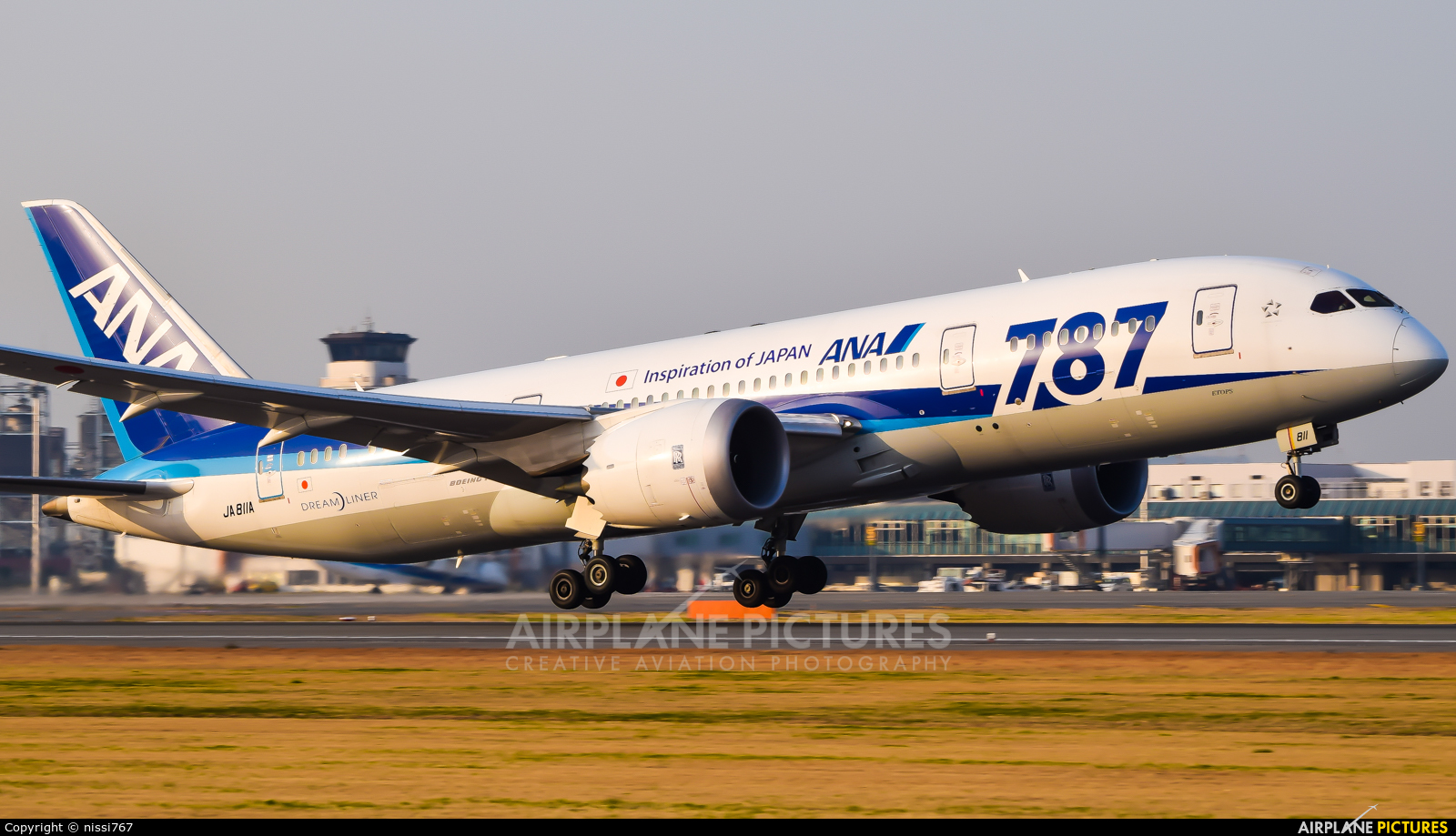 ANA - All Nippon Airways JA811A aircraft at Matsuyama