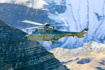 T-312 - Switzerland - Air Force Aerospatiale AS332 Super Puma