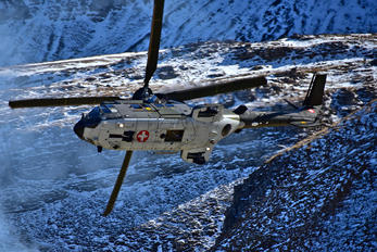 T-335 - Switzerland - Air Force Eurocopter AS532 Cougar