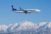 JA79AN - ANA - All Nippon Airways Boeing 737-800 aircraft