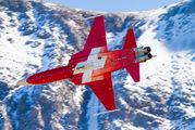 J-3088 - Switzerland - Air Force:  Patrouille de Suisse Northrop F-5E Tiger II aircraft