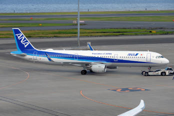 JA112A - ANA - All Nippon Airways - Airport Overview - Photography Location