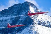 J-3090 - Switzerland - Air Force:  Patrouille de Suisse Northrop F-5E Tiger II aircraft