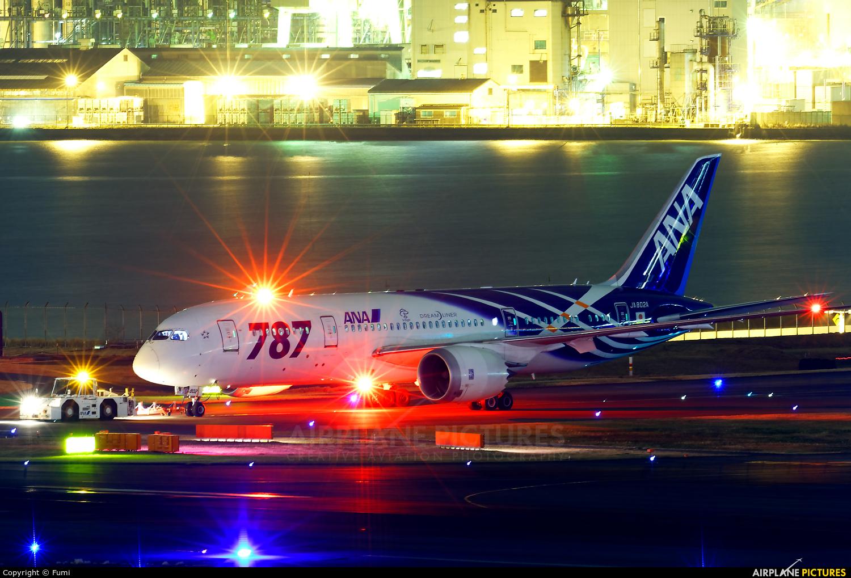 ANA - All Nippon Airways JA802A aircraft at Tokyo - Haneda Intl