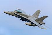 164231 - USA - Marine Corps McDonnell Douglas F/A-18C Hornet aircraft