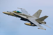 164261 - USA - Marine Corps McDonnell Douglas F/A-18C Hornet aircraft