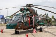 0617 - Poland - Army PZL W-3 Sokół aircraft