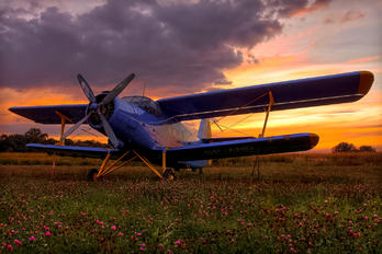 SP-AND - Private Antonov An-2