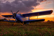 SP-AND - Private Antonov An-2 aircraft
