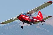 I-AEEI - Private Stinson L-5 Sentinel aircraft