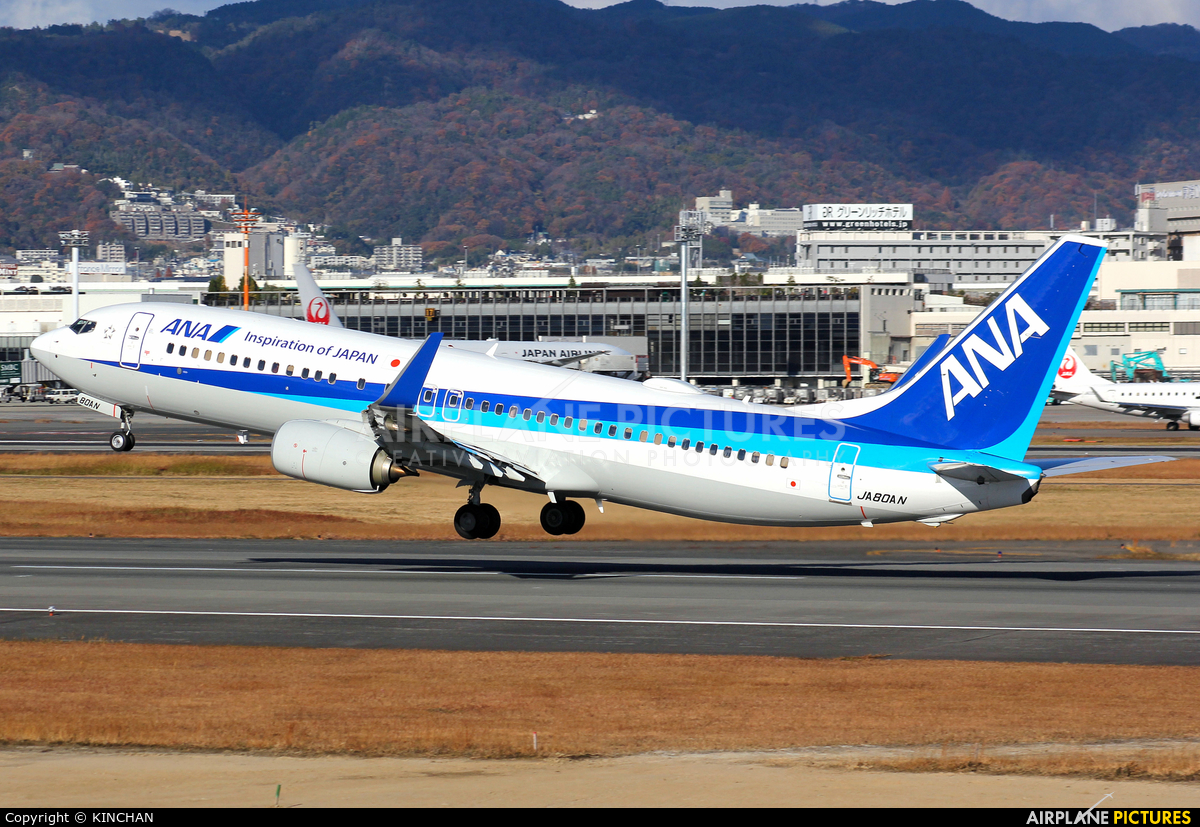 ANA - All Nippon Airways JA80AN aircraft at Osaka - Itami Intl
