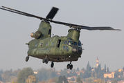 D-664 - Netherlands - Air Force Boeing CH-47D Chinook aircraft