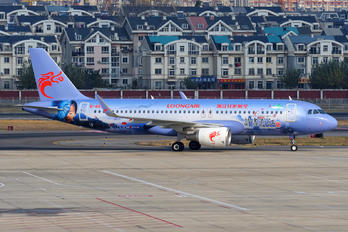 B-8593 - Loong Air Airbus A320