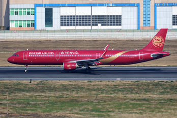 B-8317 - Juneyao Airlines Airbus A321