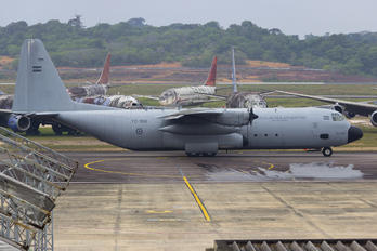 TC-100 - Argentina - Air Force Lockheed L-100 Hercules