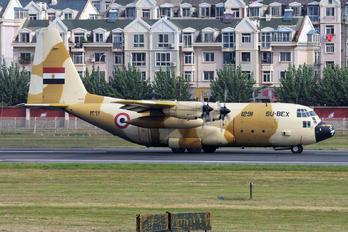 SU-BEX - Egypt - Air Force Lockheed EC-130H Hercules