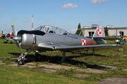 SP-YBD - Private PZL TS-8 Bies aircraft