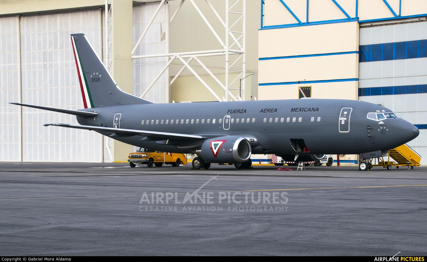 Mexico - Air Force 3529 aircraft at Mexico City - Licenciado Benito Juarez Intl