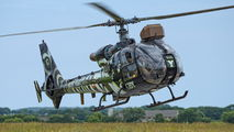 4145 - France - Army Aerospatiale SA-341 / 342 Gazelle (all models) aircraft