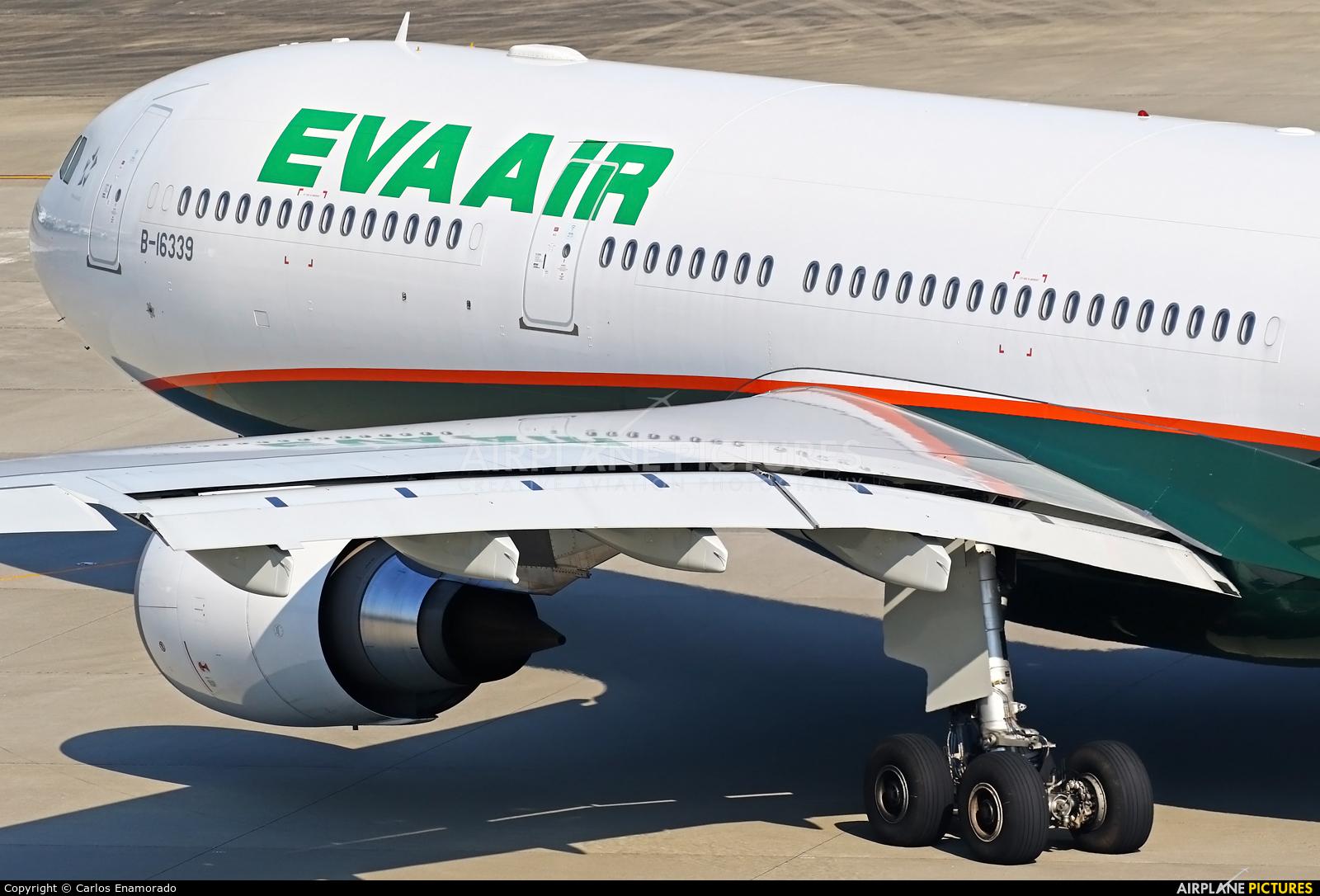 Eva Air B-16339 aircraft at Tokyo - Haneda Intl