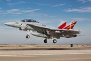 166858 - USA - Navy McDonnell Douglas EA-18G Growler aircraft