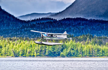 N87597 - Private de Havilland Canada DHC-2 Beaver