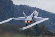 J-5018 - Switzerland - Air Force McDonnell Douglas F/A-18C Hornet aircraft