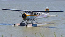 C-FOCY - Harbour Air de Havilland Canada DHC-2 Beaver aircraft