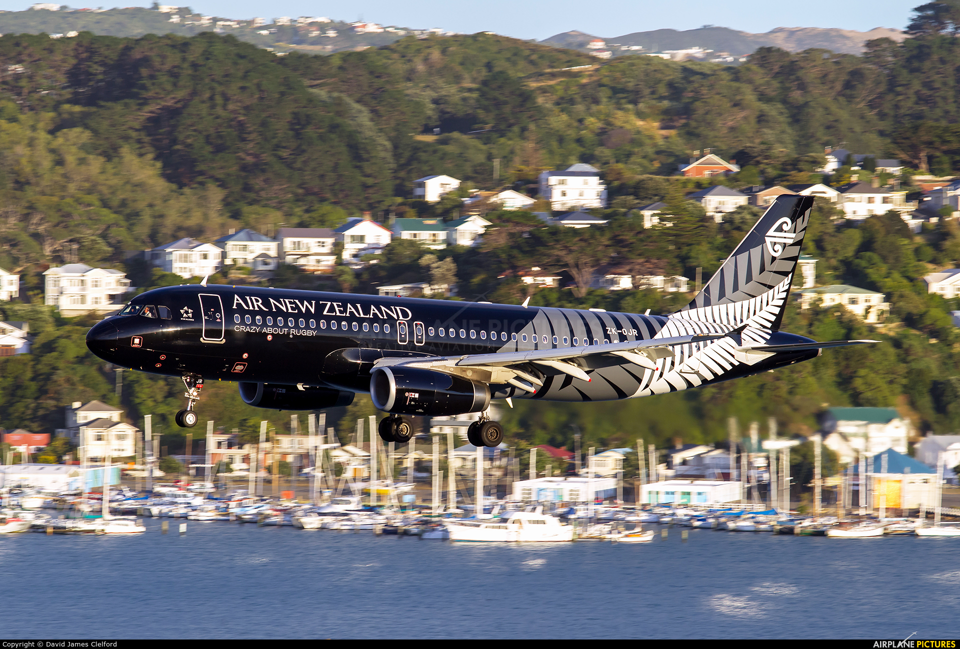 Air New Zealand ZK-OJR aircraft at Wellington Intl