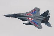 82-8898 - Japan - Air Self Defence Force Mitsubishi F-15J aircraft