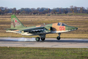 05 - Russia - Air Force Sukhoi Su-25
