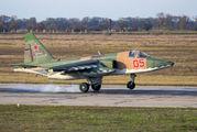 05 - Russia - Air Force Sukhoi Su-25 aircraft